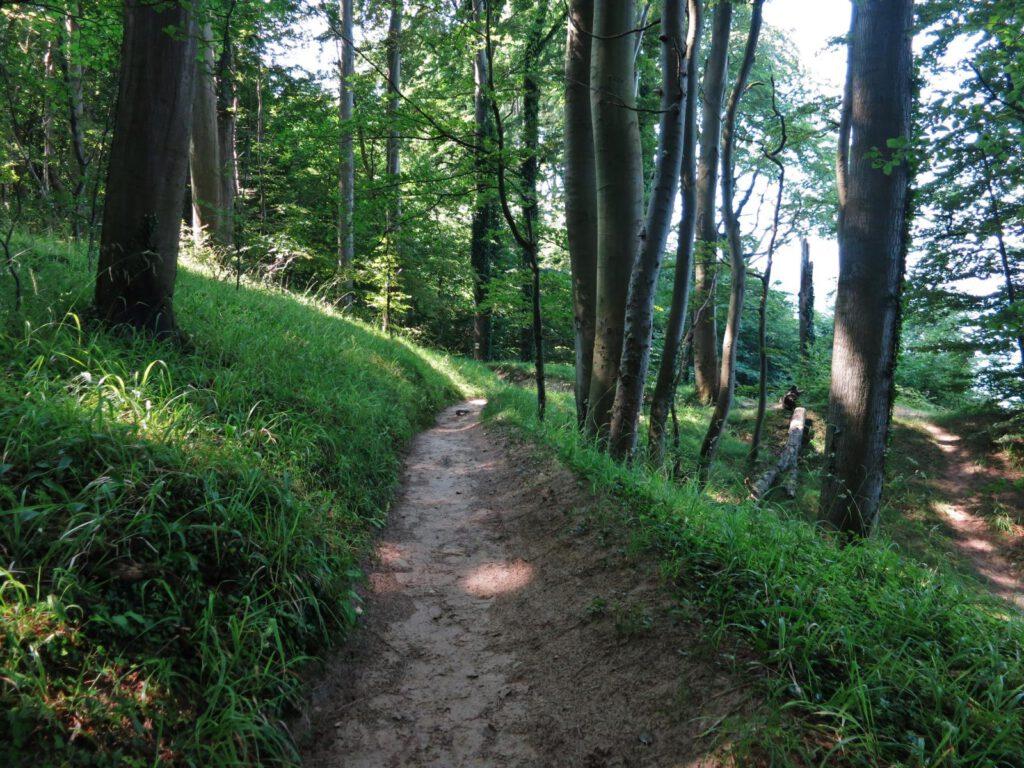 Hochuferweg zwischen Sellin und Binz