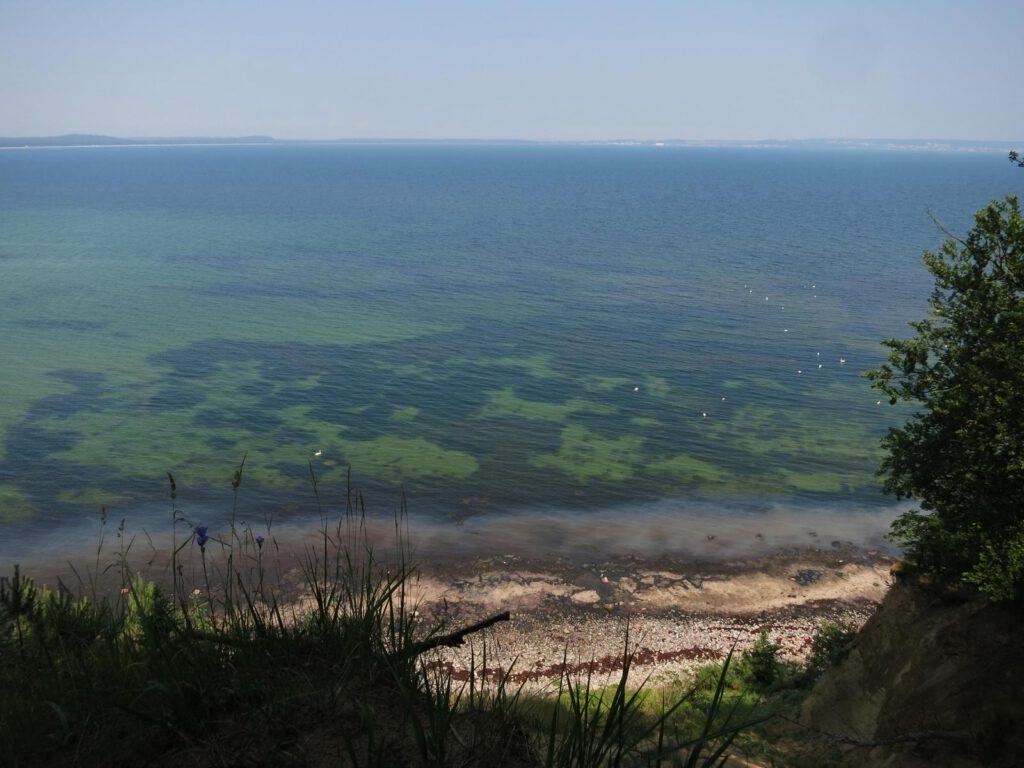 ausgespülte Küste