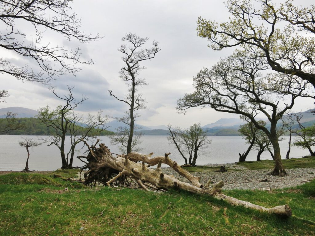 Am Loch Lomond