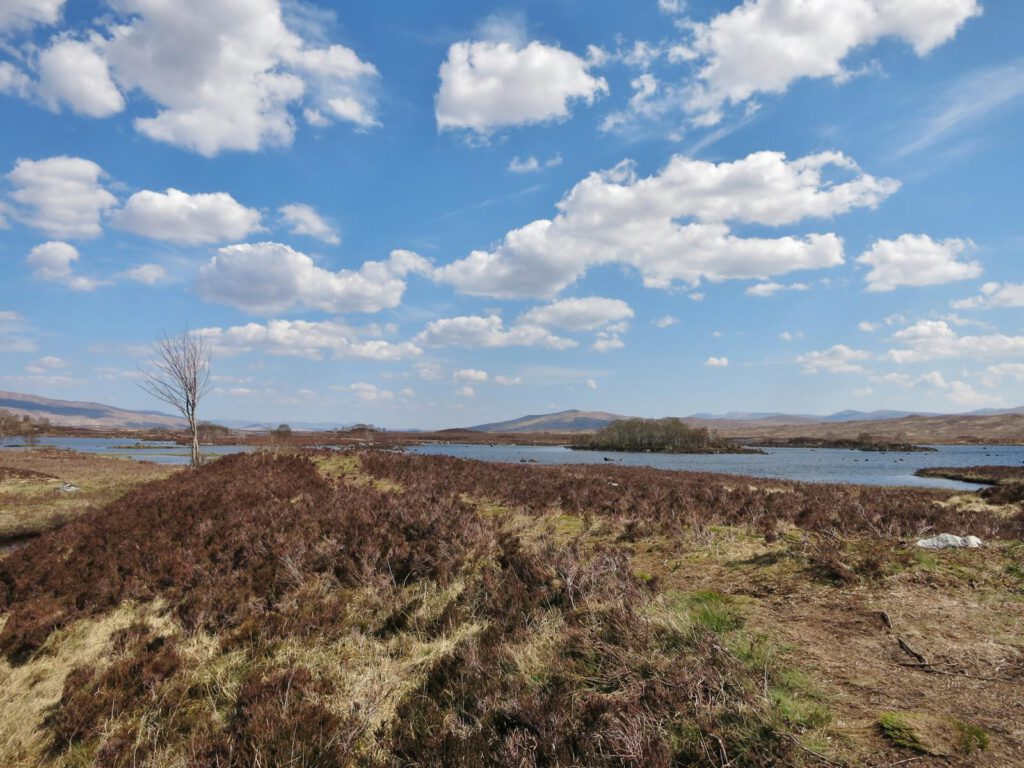 Fotostopp auf dem Weg ins Glen Coe - Tal