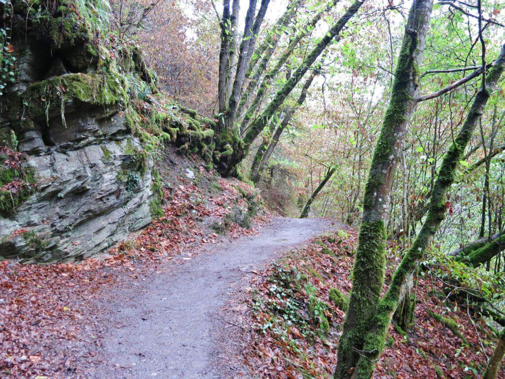 Auf dem Weg zur Burg Eltz