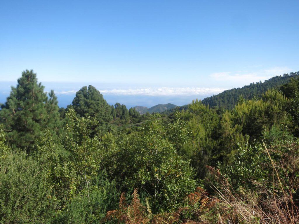 Blick vom Mirador Barranco de los Porreos