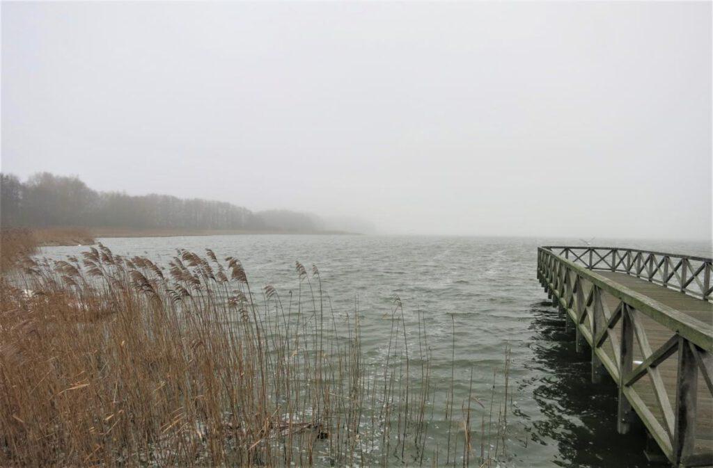 dicht - am Schmachter See