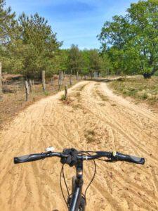 Radtour Döberitzer Heide